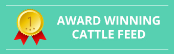 award winning cattle feed